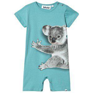 Blue Koala Hug Short Legs Finn Bodysuit 68 cm (4-6 Months) - Boy