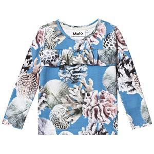 Molo Rosita T-Shirt Coral Reef